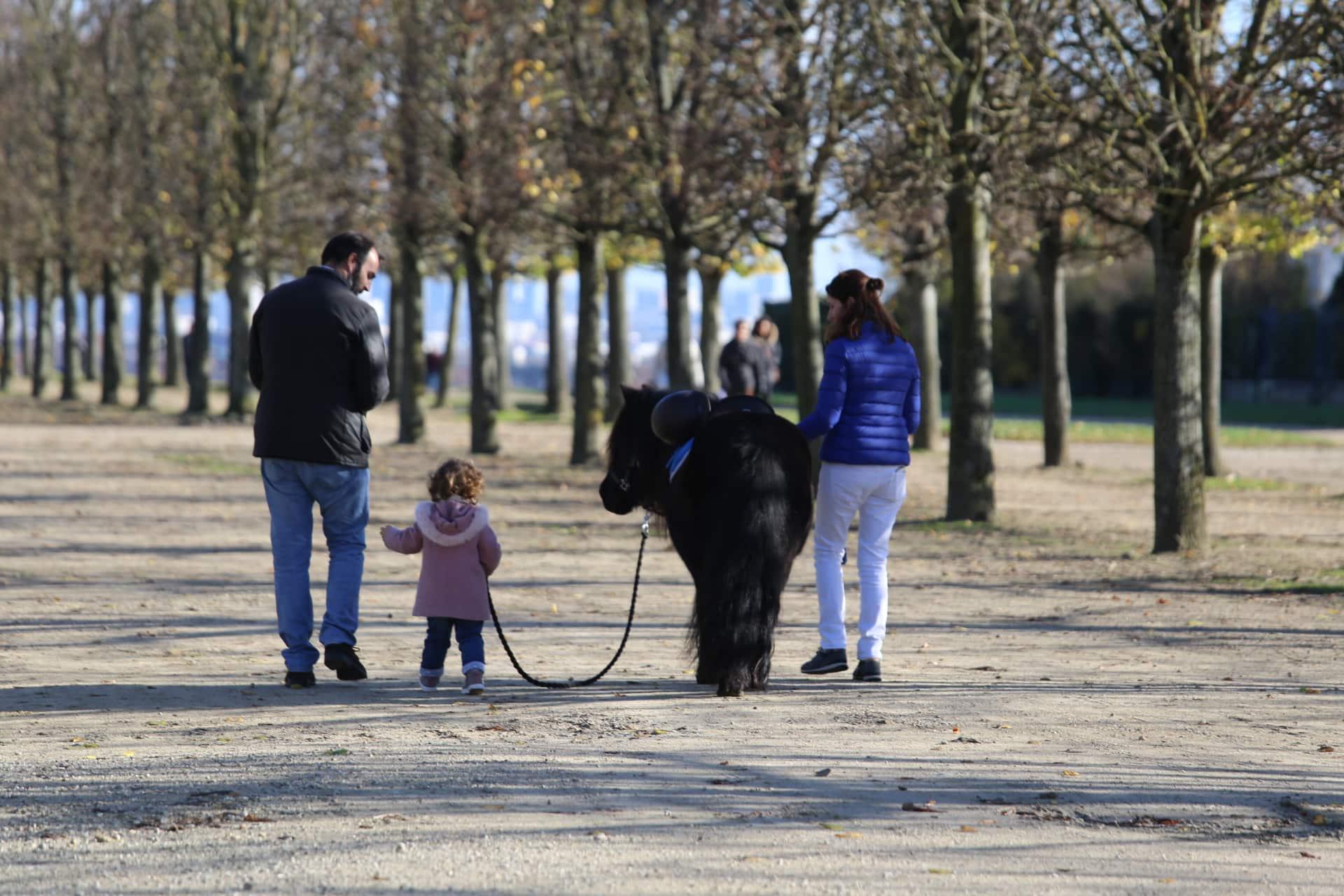 Réservez votre poney pour une balade en famille