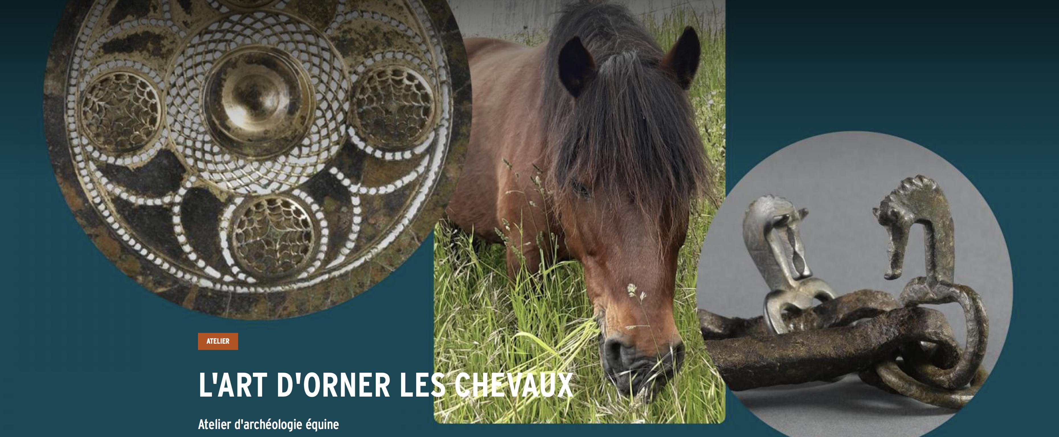 Atelier d'archéologie équine : l'art d'orner les chevaux